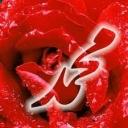 mohamad6424761